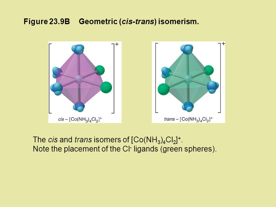 Figure 23.9B Geometric (cis-trans) isomerism. The cis and trans isomers of [Co(NH3)4Cl2]+.